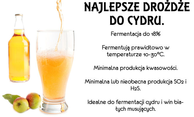 Drożdże do cydru